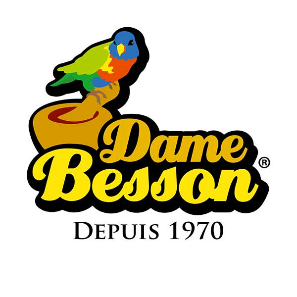 logo de la marque DAME BESSON